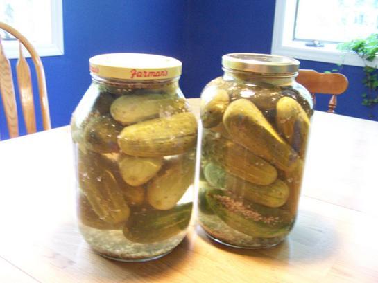 No boil pickle recipes