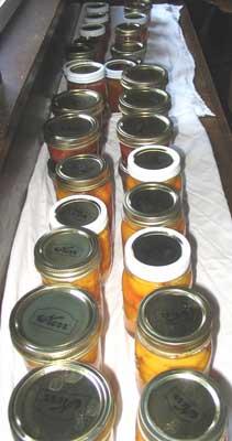 Long Line O'Jars